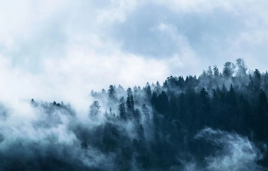 Mount Summit, IN cremation services
